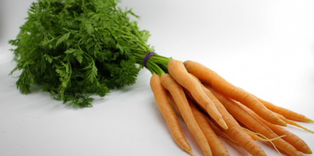 Bunch of Dutch Carrots